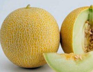 Cara Memilih Buah Melon Yang Matang Dan Manis